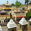 Pashupatinath temple and cremation ghats, Khatmandu — Stock Photo #67756467