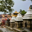 Pashupatinath temple and cremation ghats, Khatmandu — Stock Photo #67756543