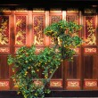 Orange tree in front of wooden door, Buddhist temple, Saigon, Vietnam — Stock Photo #68135301