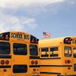 Row of American school busses, USA — Stock Photo #68135417