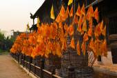 Orange Flags with Buddhist symbol in front of a temple, Chiang Mai, Thailand — Stock Photo
