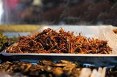 Fried grasshoppers at a Thai market — ストック写真