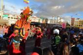 Pigs adorned with fruits, spirits, flags and guinea pigs at La Fiesta de la Mama Negra traditional festival — Stock fotografie