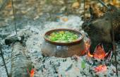 Roast in a clay pot on the fire — Stock Photo