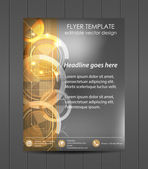 Professional business flyer template, cover design, corporate banner — Stock Vector