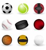 Sport icons, balls and puck on a white background — Stock Vector