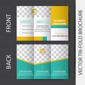 Business tri-fold brochure vector design — Stock Vector