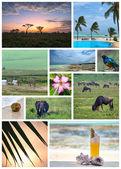 Tanzania — Stock Photo