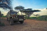 Safari vehicle — Stock Photo