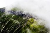 Peyzaj park kar yağışı — Stok fotoğraf