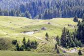 Landscape from Bucegi Mountains, part of Southern Carpathians in Romania — Stockfoto