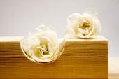 木制几何件与白色的玫瑰和浅灰色背景 — 图库照片