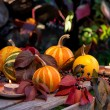 Autumn still life of pumpkins, autumn leaves and candles — Stockfoto #54156839