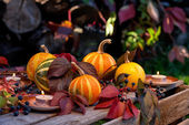 Autumn still life of pumpkins, autumn leaves and candles — Stock Photo