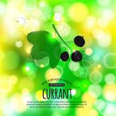 Currant on shining summer background — Stock vektor