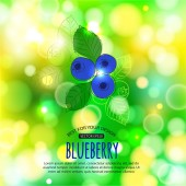 Blueberry on shining summer background — Stock Vector
