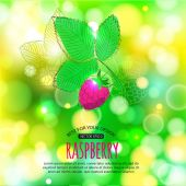 Raspberry on shining summer background — Stock Vector