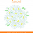 Hand drawn colorful camomile background — Stock Vector #53527993