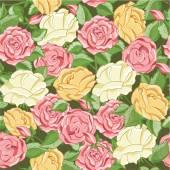 Wzór z ręka kolorowe róże — Wektor stockowy