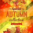 Autumn sale typographical background — Stock Vector #55503295