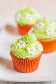 Easter cupcakes decorated with flowers on white plate — Stock Photo