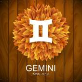 Gemini horoscope white sign — Vettoriale Stock