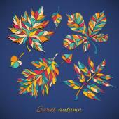 Autumn vector leaves set — Stock Vector
