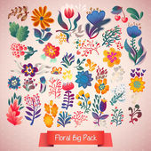 Elegance Flowers Big Pack — Stock vektor