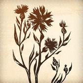 Ornamental cornflower card. — Stock Vector