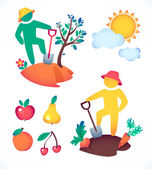 Gardener and his garden icons — Stock Vector