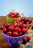Colorful bowl with cherries fruit — Stock Photo