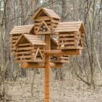 Feeders for birds. — Stock Photo #71356529
