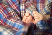Baby Feet under blanket — Foto de Stock