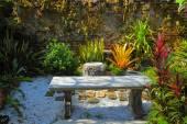 Backyard. — Stock Photo