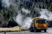 Grande caminhão na pradaria — Fotografia Stock