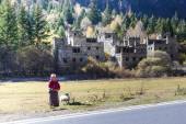 Jiuzhaigou, Sichuan, China - November 05, 2014 : An unidentified tibetan Chinese woman and log home at autumn forest in national level reserve in Jiuzhaigou, Sichuan Province, China. — Stock Photo