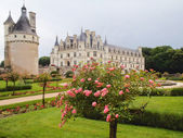 View of the castle and gardens — Stock Photo
