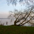 Bad Zwischenahn, evening view of the lake. — Stock Photo #60986661