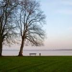 Bad Zwischenahn, evening view of the lake. — Stock Photo #64045877