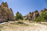 "Cappadocia, Turkey. Stone ""mushrooms"" in the Valley Pashabag (Valley of the Monks) — Stock Photo"