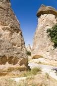 Cappadocia, Turkey. Pillars of weathering in the Pashabag Valley (Monks Valley) — Stock Photo