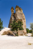 "Cappadocia, Turkey. ""Residential"" many-headed column weathering Pashabag Valley (Valley of the Monks) — Foto de Stock"