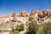 Cappadocia, Turkey. The picturesque  Devrent Valley with figures of weathering (outliers) — Stock Photo