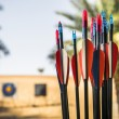 Bow and arrows. Shooting in the desert — Stock Photo #69854877