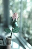 Single artificial rose in a vase — Stock Photo