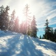 Winter landscape with lens flare — Stock Photo #75515329