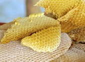 The close view of honeycomb — Stock Photo