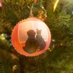 Beautiful glass balls on Christmas Tree — Stock Photo #56999831