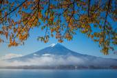 Mt Fuji and Autumn in Japan — Stock Photo