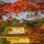 Golden Pavilion Kinkakuji Temple in Kyoto Japan — Stock Photo #58694223